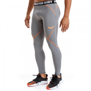 EVO-FIT Training Leggings Evolution Body Grey 2291