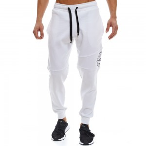Sweatpants Evolution Body Grey 2340W