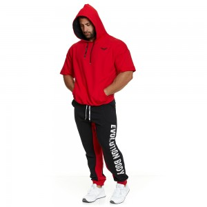 Hoodie Evolution Body Red 2394RED