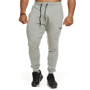 Sweatpants Evolution Body Grey 2399GREY