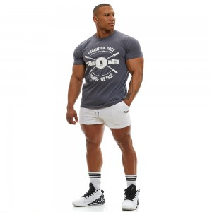 T-shirt Evolution Body Grey 2355AGR
