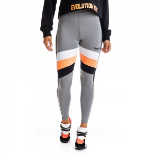 EVO-FIT Leggings Evolution Body Grey 2309G