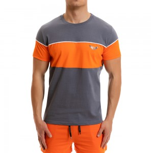 T-shirt Evolution Body Grey 2259grey