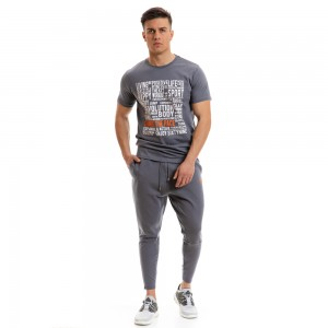 T-shirt Evolution Body Grey 2267grey