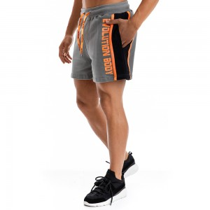 Shorts Evolution Body Grey 2293GR