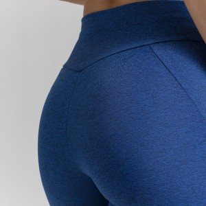 EVO-FIT Capri Leggings Evolution Body Blue 3010blue